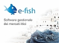 fish market management software, electronic auction, online auction